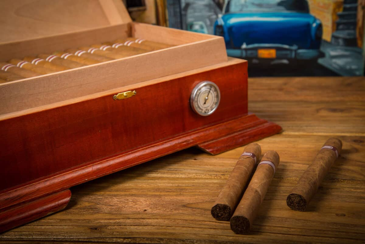 Best Cigar Humidifiers of 2020